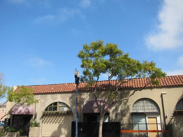 jacaranda-studios-east-village-downtown-san-diego-92101-7