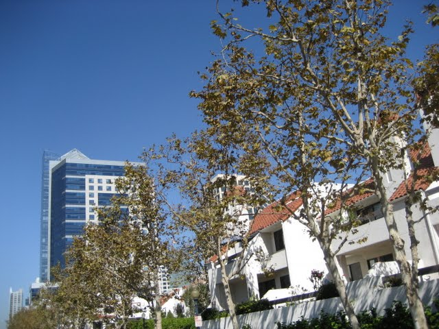 park-row-condos-downtown-san-diego-11
