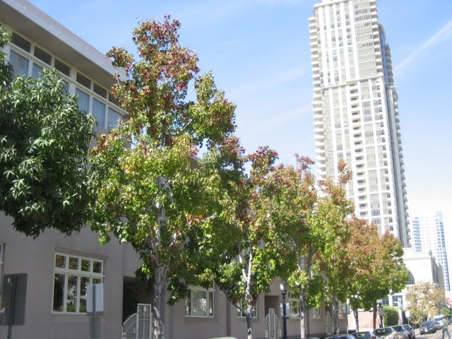 seven-on-kettner-condos-downtown-san-diego-1