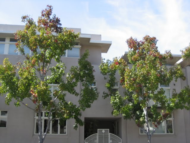 seven-on-kettner-condos-downtown-san-diego-16