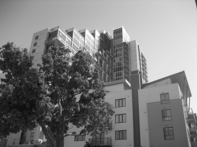 treo-condos-downtown-san-diego-92101-13